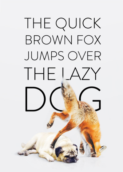 the-quick-brown-fox